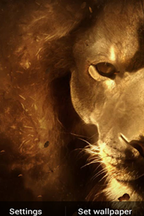 Lion King HD Live Free LWP- screenshot thumbnail