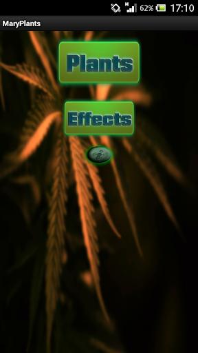 Mary Plants - PRO
