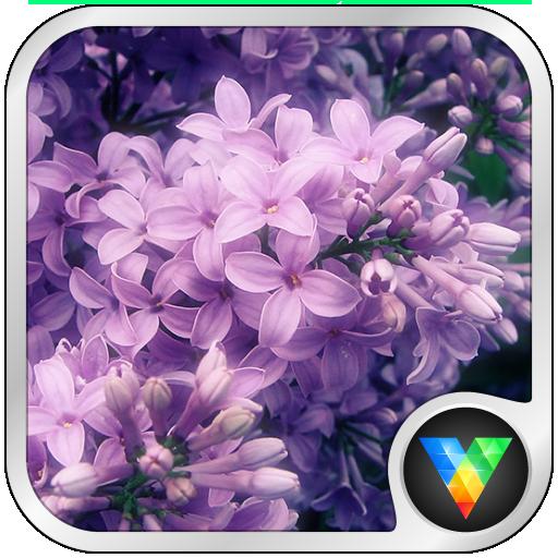 花簇动态壁纸 個人化 App LOGO-APP開箱王