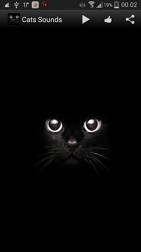 猫の音をニャー
