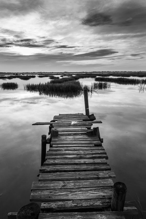 Summer Dock by Jason Green - Black & White Landscapes