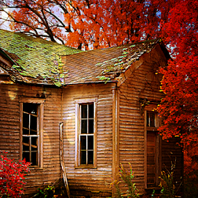 Old School in Autumn by Julie Dant - Buildings & Architecture Decaying & Abandoned ( old schools, autumn, fall, old framed buildings, abandoned buildings, old abandoned school )