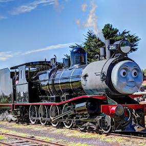 Bellarine Railway - Queenscliff Victoria by Peter Keast - Transportation Trains ( tourist, railway, steam train, railroad, train, transportation, historic,  )