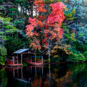 The Boat Dock by Steven Faucette - Landscapes Waterscapes ( fall, reflections, lake )