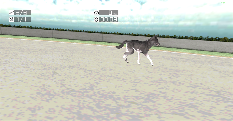 Dog Racing: Siberian Husky - screenshot