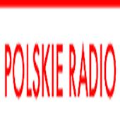 Polskie HD Radios