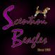Scentini Beagles Since 1995