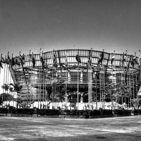 Nelum Pokuna Mahinda Rajapaksa Theatre by Kavindu Anthony - Black & White Buildings & Architecture ( black and white, theatre, purfomanses, sri lanka, nelum pokuna, drama,  )