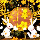 Rabbit Elegant Story