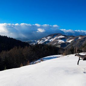 multiplex - seat and watch... by Dan Baciu - Artistic Objects Furniture ( snowkite, mountain, bench, romania, furniture, romance, mountains, blue sky, nature, seat, sunny, snow, nostalgy, seats, nostalgic, lonely, bran_catle, multiplex, happiness, clear day, snowing, holiday, winter_holifay, winter, cinema, snowking, view, lonelyness, bran, relax, tranquil, relaxing, tranquility,  )