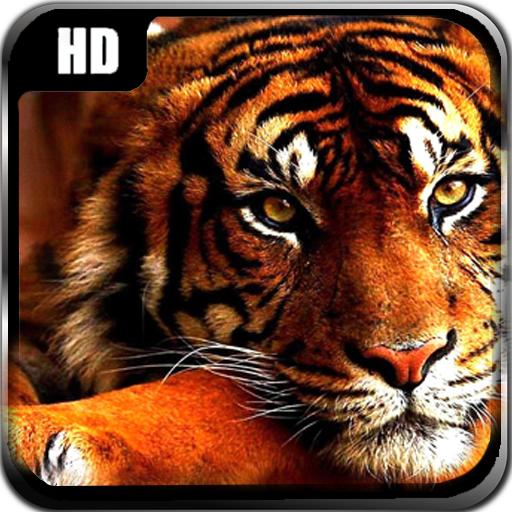 タイガーは、壁紙を生きる 生活 App LOGO-硬是要APP