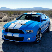 Shelby Mustang Wallpapers HD