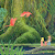Secret of Mana file APK for Gaming PC/PS3/PS4 Smart TV
