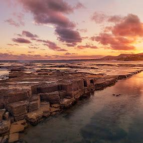 Little Austinmer Beach by Chris Gonzalez - Landscapes Sunsets & Sunrises ( clouds, water, orange, red, sunset, trees, yellow, beach, rocks, sun )