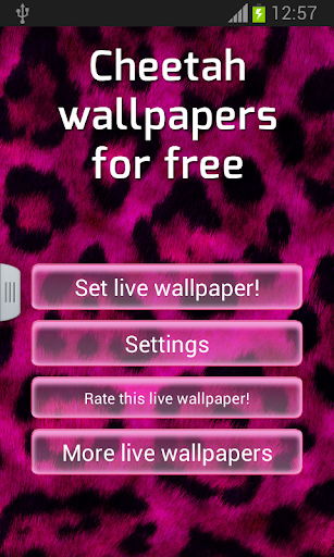 【免費個人化App】Cheetah Wallpapers for Free-APP點子