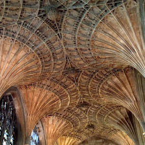 Peterborough Cathedral Fan Vaulting by Timothy Carney - Buildings & Architecture Architectural Detail ( england, gothic, peterborough, fan vaulting, cathedral )