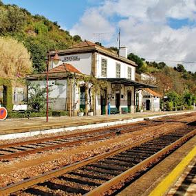 Train Station Caldas de Aregos, Douro, Portugal by João Branquinho - Transportation Trains ( comboio, rio, estação, caldas, aregos, station, train, portugal, douro, river )
