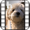 Puppies Video Homescreen