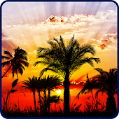 Sunset HD Live Wallpaper