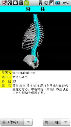 3D解剖学Lite