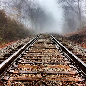 Vanishing Point by George Holt - Transportation Railway Tracks ( turn, train tracks, vanishing point, autumn, fog, fall, bend, train,  )