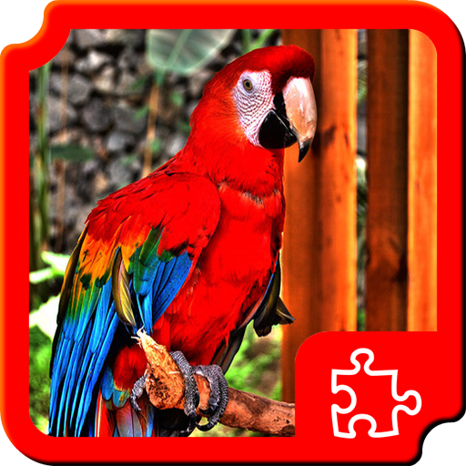 Birds Puzzles Android APK Download Free By Dimax Puzzles