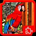 Birds Puzzles icon
