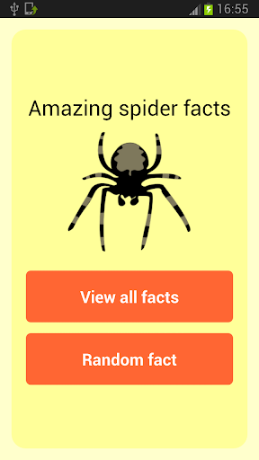 Amazing Spider Facts