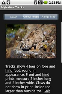 MyNature Animal Tracks - screenshot thumbnail