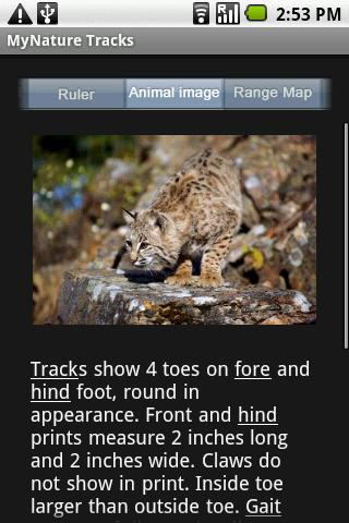 MyNature Animal Tracks- screenshot