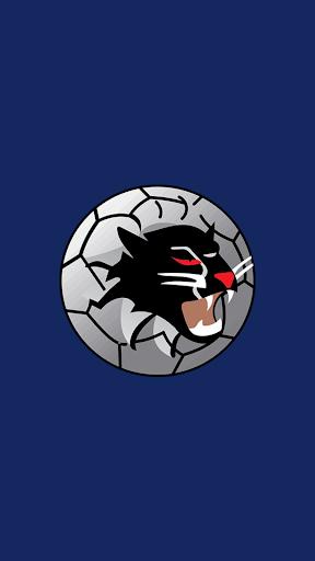 Woongarrah Wildcats FC