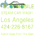 Eco Mobile Steam Car Wash icon