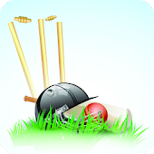 Fling Cricket Fling