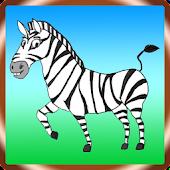 Einstein's Zebra