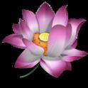 Chinese Words logo