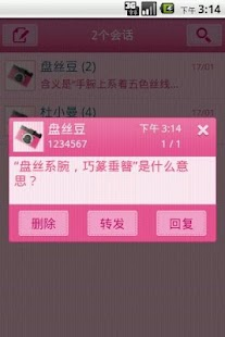 Easy SMS Pink Camera theme screenshot