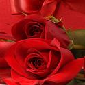 خلفيات رومانسية جالاكسى اس 3 icon
