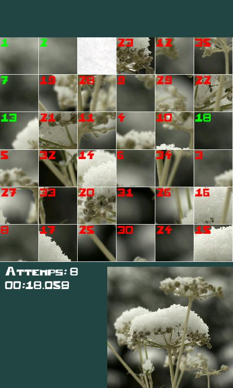 PuzzleSquare- screenshot