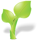 English Word (Vegetable) icon