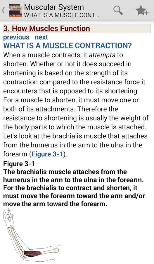 The Muscular System Manual- screenshot