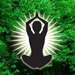 Inner Focus Yoga