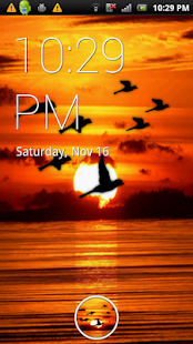 Bird Flock Live Wallpaper - screenshot thumbnail
