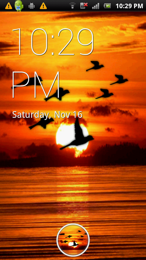 Bird Flock Live Wallpaper - screenshot
