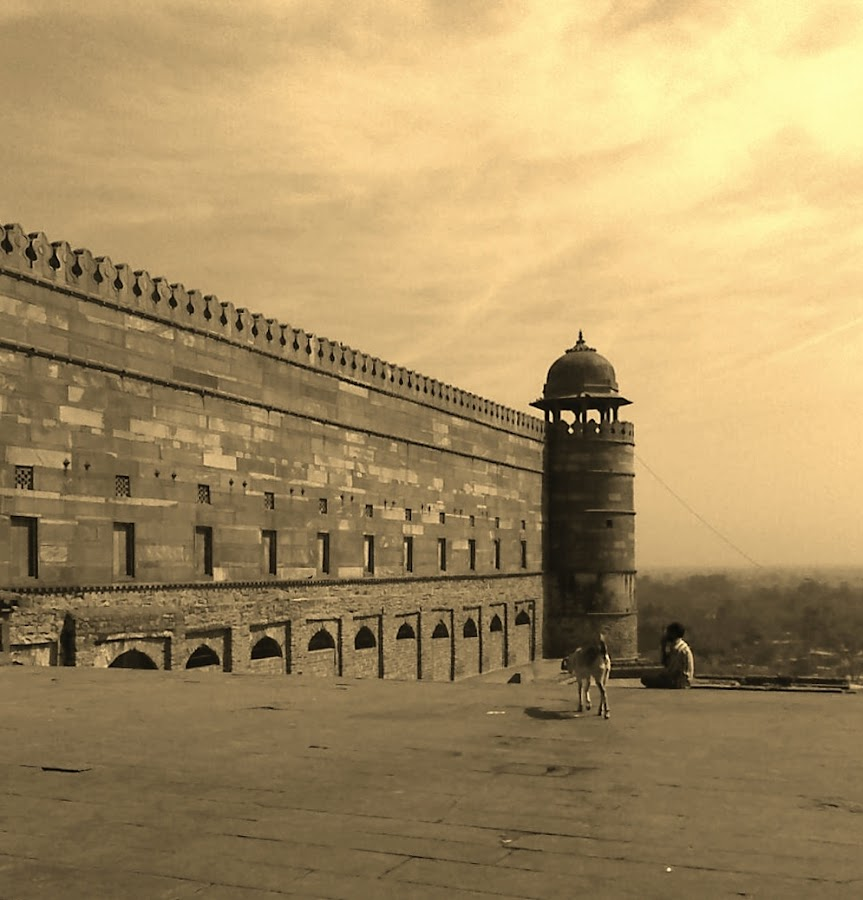 Fatepur-Sikri by Caesar Jees - Buildings & Architecture Public & Historical ( history, sepia, india, architecture, historical )