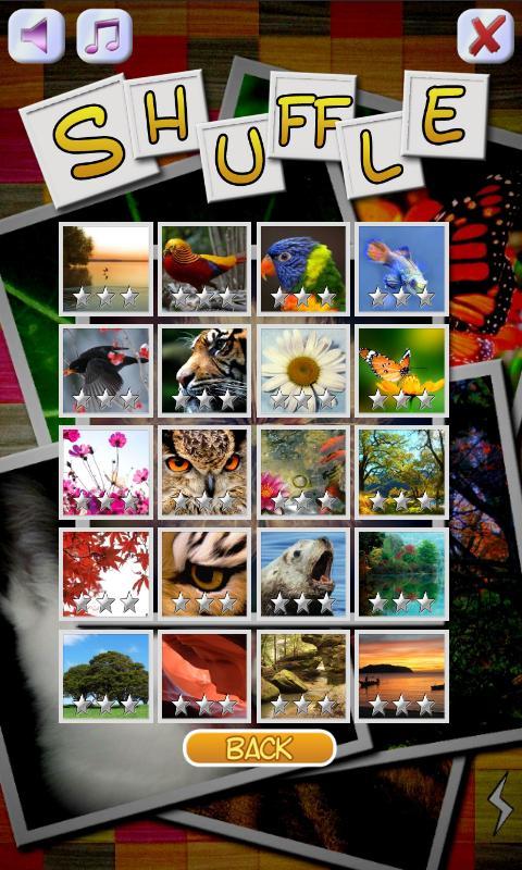 The Shuffle Puzzle- screenshot
