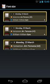 All-in-One Agenda widget Screenshot 8