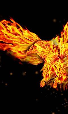 Fire Wallpapers HD - screenshot