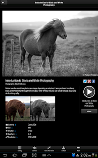 PicturePerfect Photography - screenshot thumbnail
