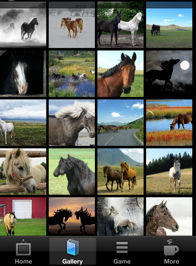 Horse Wallpapers & Backgrounds by iMod Apps- screenshot