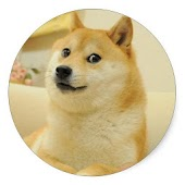 Doge Value Checker